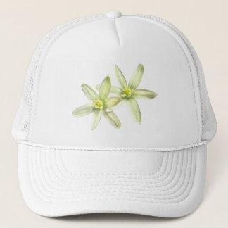 ベスレヘムの帽子の星 キャップ