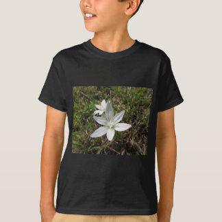 ベスレヘムの星によってはOrnithogalumのumbellatumが開花します Tシャツ