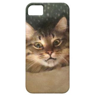 ベッドの携帯電話カバーの下の熱狂するな猫 iPhone SE/5/5s ケース