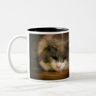 ベッド猫のミームにとどまるべきです ツートーンマグカップ