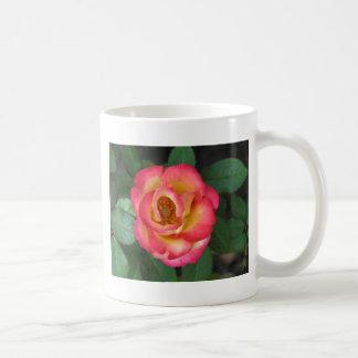 ベティー・ブープ140 コーヒーマグカップ