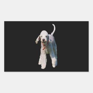 ベドリントン・テリア犬のかわいく美しい写真 長方形シール