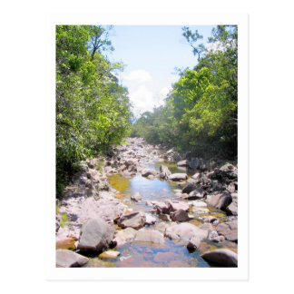 Creek in Venezuela Jungle Landscape