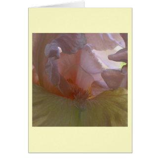 ベバリィの土台のアイリスカード カード
