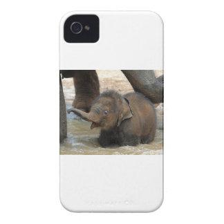 ベビーのアジアゾウ Case-Mate iPhone 4 ケース