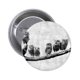 ベビーのアメリカオオコノハズクボタン 5.7CM 丸型バッジ