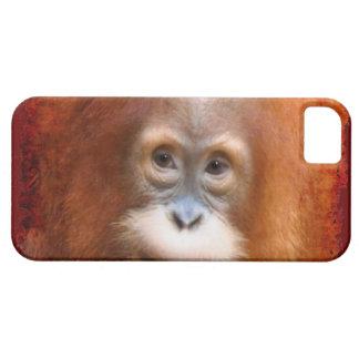 ベビーのオランウータンの絶滅寸前の赤いサル装置箱 iPhone SE/5/5s ケース