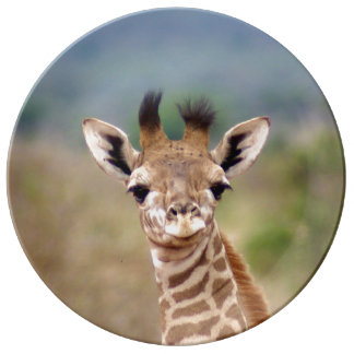 ベビーのキリンの写真、ケニヤ、アフリカ|の磁器 磁器プレート
