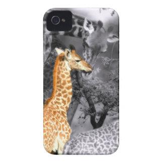 ベビーのキリン Case-Mate iPhone 4 ケース