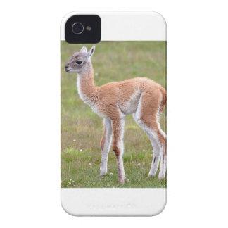 ベビーのグアナコの子牛 Case-Mate iPhone 4 ケース