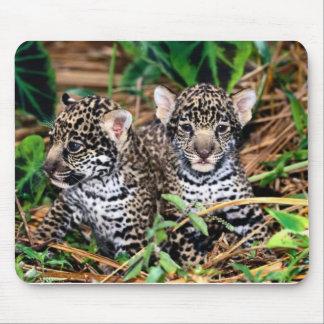 ベビーのジャガー マウスパッド