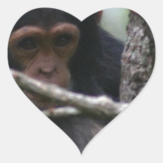 ベビーのチンパンジー ハートシール