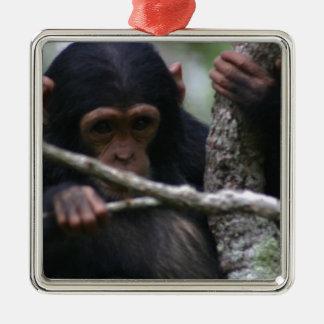 ベビーのチンパンジー メタルオーナメント