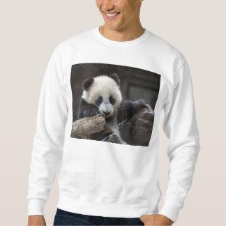 ベビーのパンダの上昇木 スウェットシャツ