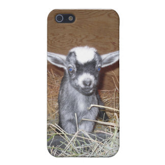 ベビーのヤギ iPhone 5 ケース