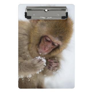 ベビーの日本のなマカク属|の雪猿 ミニクリップボード