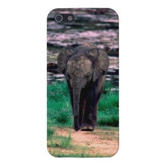 ベビーの森林象のiPhoneの場合 iPhone SE/5/5sケース