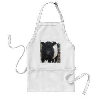 ベルトを付けられたギャロウェー牛食べ物の干し草 スタンダードエプロン