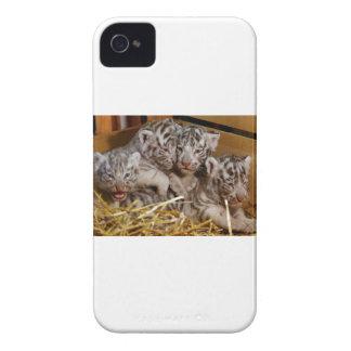 ベンガルトラカブス Case-Mate iPhone 4 ケース