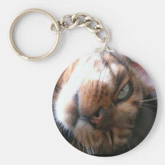 ベンガル熱狂するな猫のキーホルダー キーホルダー