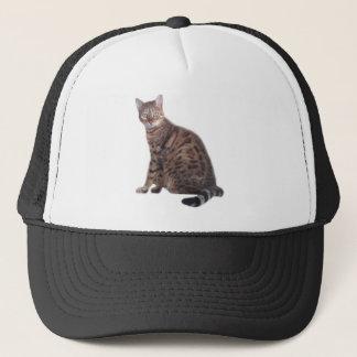 ベンガル猫の服装 キャップ