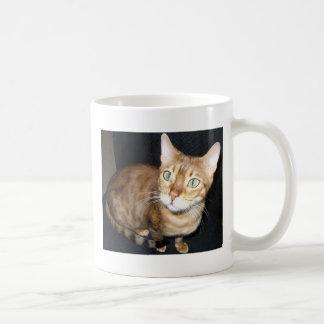 ベンガル猫 コーヒーマグカップ