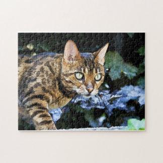 ベンガル美しい猫 ジグソーパズル