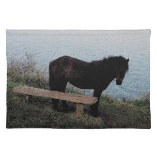 ベンチ.3.の近くのデボンの海岸のDartmoorの南子馬 ランチョンマット