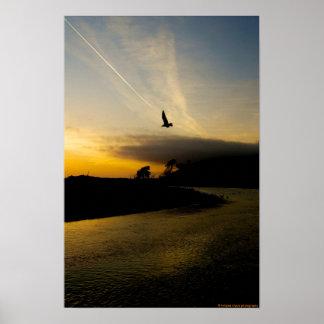 ベントゥーラカリフォルニアの日没およびカモメポスター ポスター