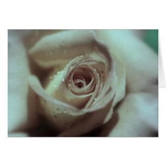 ベージュ色バラ カード