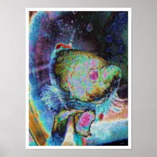 ベータ魚1 ポスター