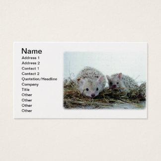 ペットとしてハリネズミ 名刺