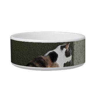 ペットボウル-茶色のぶち猫かTortoiseshell猫 ボウル
