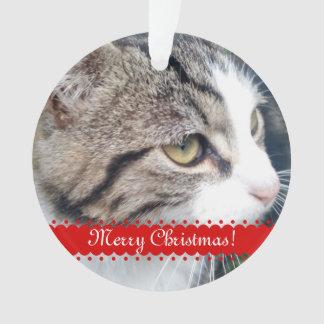 ペット写真のクリスマスのオーナメント のアップロードあなたのイメージ オーナメント