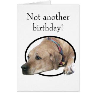 ペットRhodesian Ridgeback犬の写真 カード
