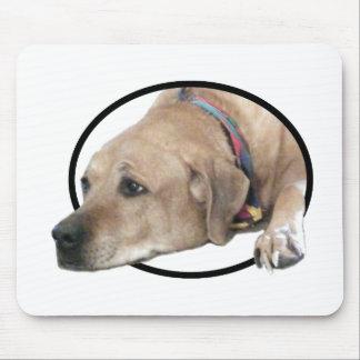 ペットRhodesian Ridgeback犬の写真 マウスパッド