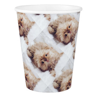 ペニーオレンジレバーシーズー(犬)のTzuの雲9の紙コップ 紙コップ