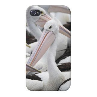 ペリカンのポッド iPhone 4/4S カバー