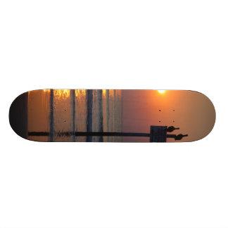 ペリカンの日の出の海のDaytona Beach FLのスケートボード 21.6cm オールドスクールスケートボードデッキ