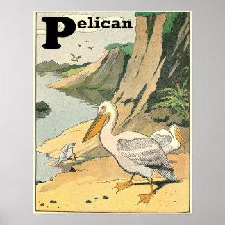 ペリカンの物語の本のアルファベット ポスター
