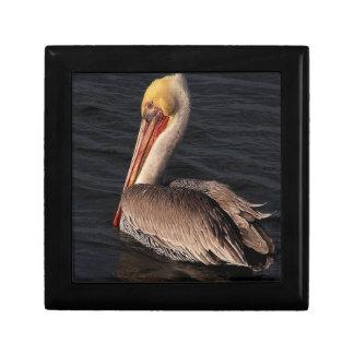 ペリカンの鳥の野性生物動物の海 ギフトボックス