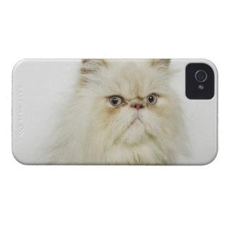 ペルシャのポートレート Case-Mate iPhone 4 ケース