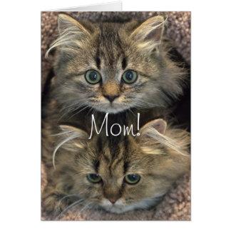 ペルシャの子ネコの母の日カード グリーティングカード