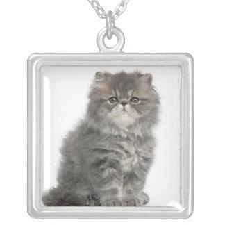 ペルシャの子ネコ(2か月古い)のモデル シルバープレートネックレス