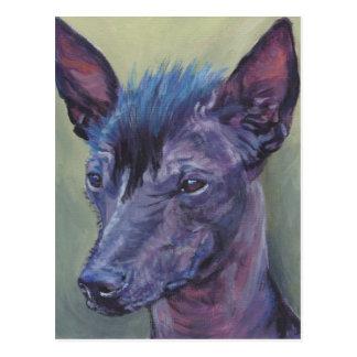 ペルーの毛のない犬のファインアートの絵画 葉書き