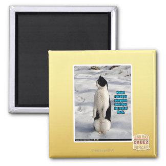 ペンギンによって上げられる マグネット