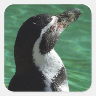 ペンギンのステッカー スクエアシール