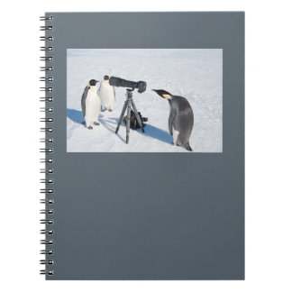 ペンギンの報道写真家のノート ノートブック