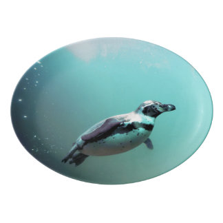 ペンギン 磁器大皿
