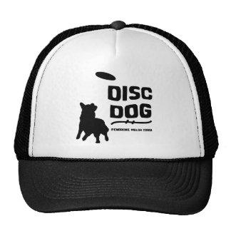 ペンブロークのウェルシュコーギーディスク犬 帽子